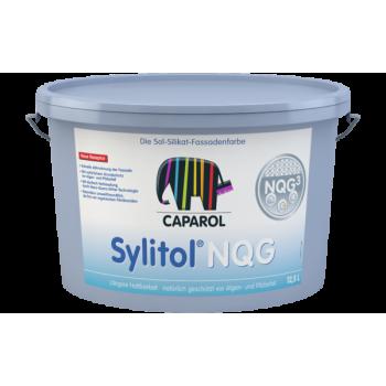 Caparol Sylitol-NQG краска силикатная фасадная